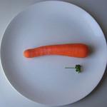 Dieta Rina - ZRZUĆ 15 KG bez wysiłku i efektu JOJO 1